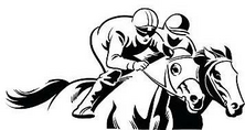 Two Horse Race